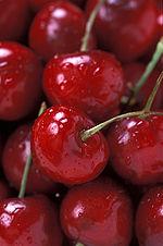150px-Bing_Cherries_(USDA_ARS)