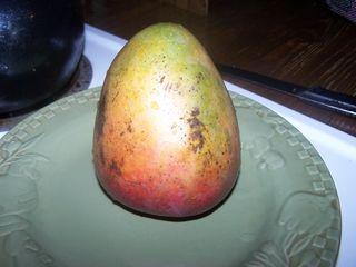 Mangoes 001