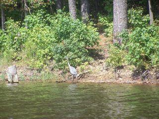 Canoeing 012